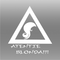 Emblema Funny 23