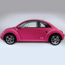 Kit Stickere Auto Buburuze 1