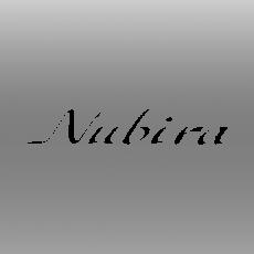 Emblema Nubira